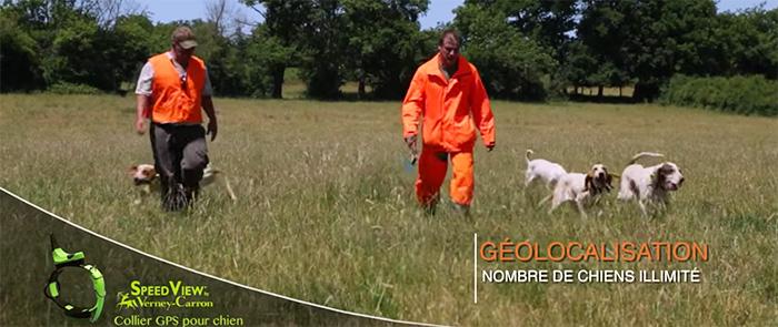 collier gps chien de chasse