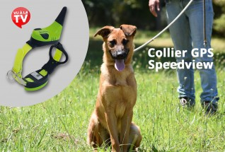 Collier GPS Speedview